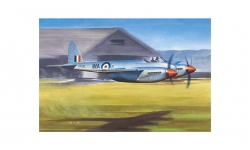 Hornet F.Mk. 1 de Havilland - TRUMPETER 02893 1/48