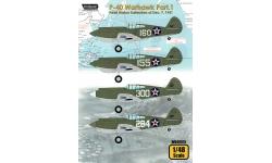 P-40B Curtiss, Warhawk - WOLFPACK DESIGN WD48015 1/48