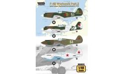P-40C Curtiss, Warhawk, Tomahawk IIB - WOLFPACK DESIGN WD48016 1/48